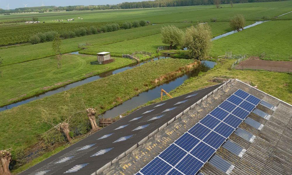 Lexmond - Lichtplaten vervangen (2) Waaijenberg Bouw en Verhuur